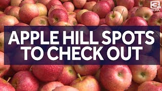 Apple Hill Farms In California You Should Check Out This Fall