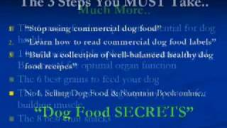 Nutritious Dog Food Recipes Proper Golden Retriever Care