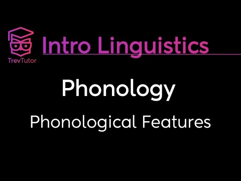 [Introduction to Linguistics] Phonological Features