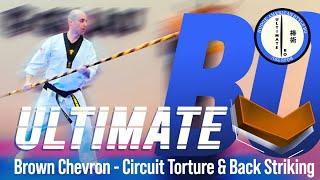 Ultimate Bo - Brown Chevron - Circuit Torture & Back Striking 1