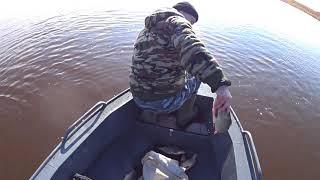 НАКОНЕЦ ТО ВЕСНА Первые дни рыбалки сетями ЖЕСТЬ Ну и УЛОВ сегодня ПРИЯТНОГО просмотра