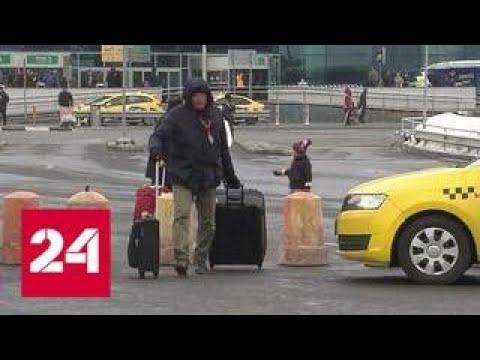 Аэропорт Домодедово отгородился от