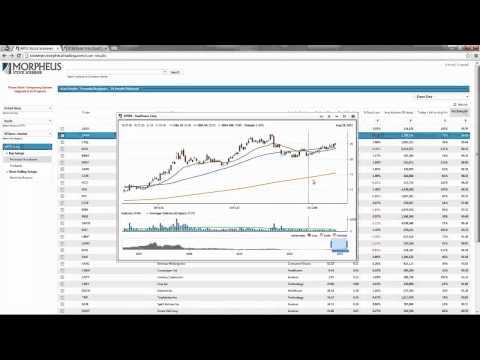 Sept. 19, 2013 Live Webinar - Picking The Best Stocks In The Market