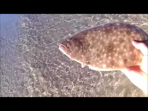 Fly Fishing the NC Surf