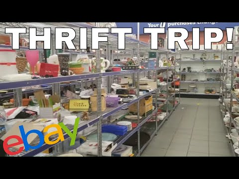 This Thrift Store Had Some AMAZING Things! Goodwill Finds To Sell Online!