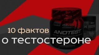 Тестостерон (Мужской половой гормон). 10 фактов
