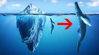 Why Icebergs are COOLER than You Think!