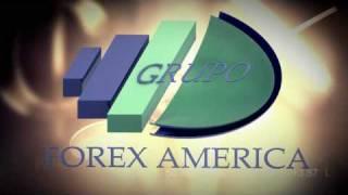 grupo forex america 3d