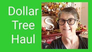 Dollar Tree Haul 9/17/19