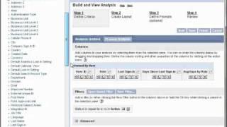 Intelenex - CRM On Demand User Sign In Report