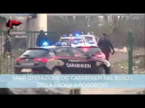 MAXI OPERAZIONE DEI CARABINIERI NEL BOSCO DELLA DROGA A ROGOREDO