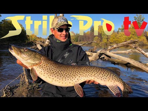Strike Pro TV - TARGET AMUR (Amur Pike Fishing In Eastern Russia)
