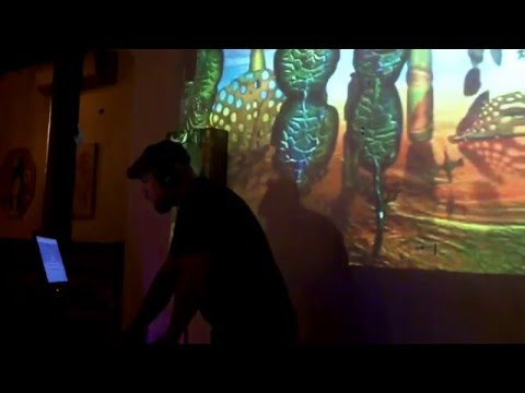 Synapsis at Future Sound - Frederick MD (4 year anniversary)