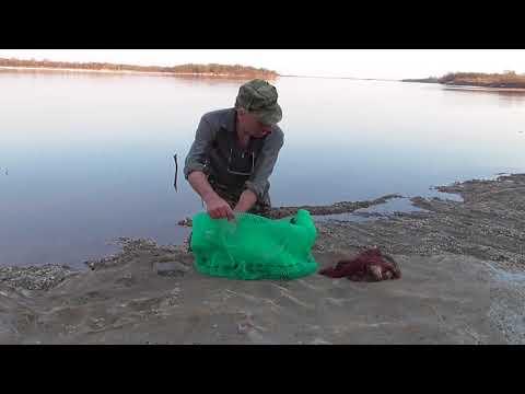 рыбалка р. Зея открытие 2018