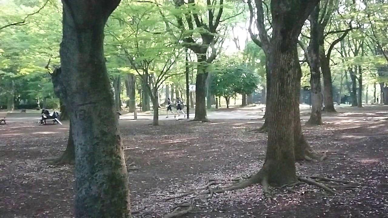 代代木公園 6 - YouTube