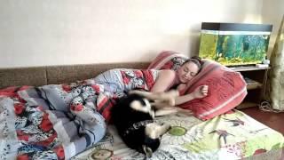 Собака - лучший друг человека! Автор Виктория Куприянова.
