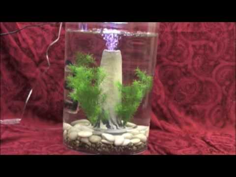 Biorb volcano decoration in biube pure youtube for Aquarium volcano decoration
