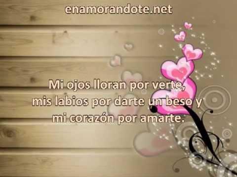 Frases De Amor Cortas Para Dedicar A Tu Novio Comparte Tus Frases