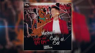 SCOOBY DOO PA PA vs SALIO EL SOL (FONSI DE GARCIA MASHUP 2018)