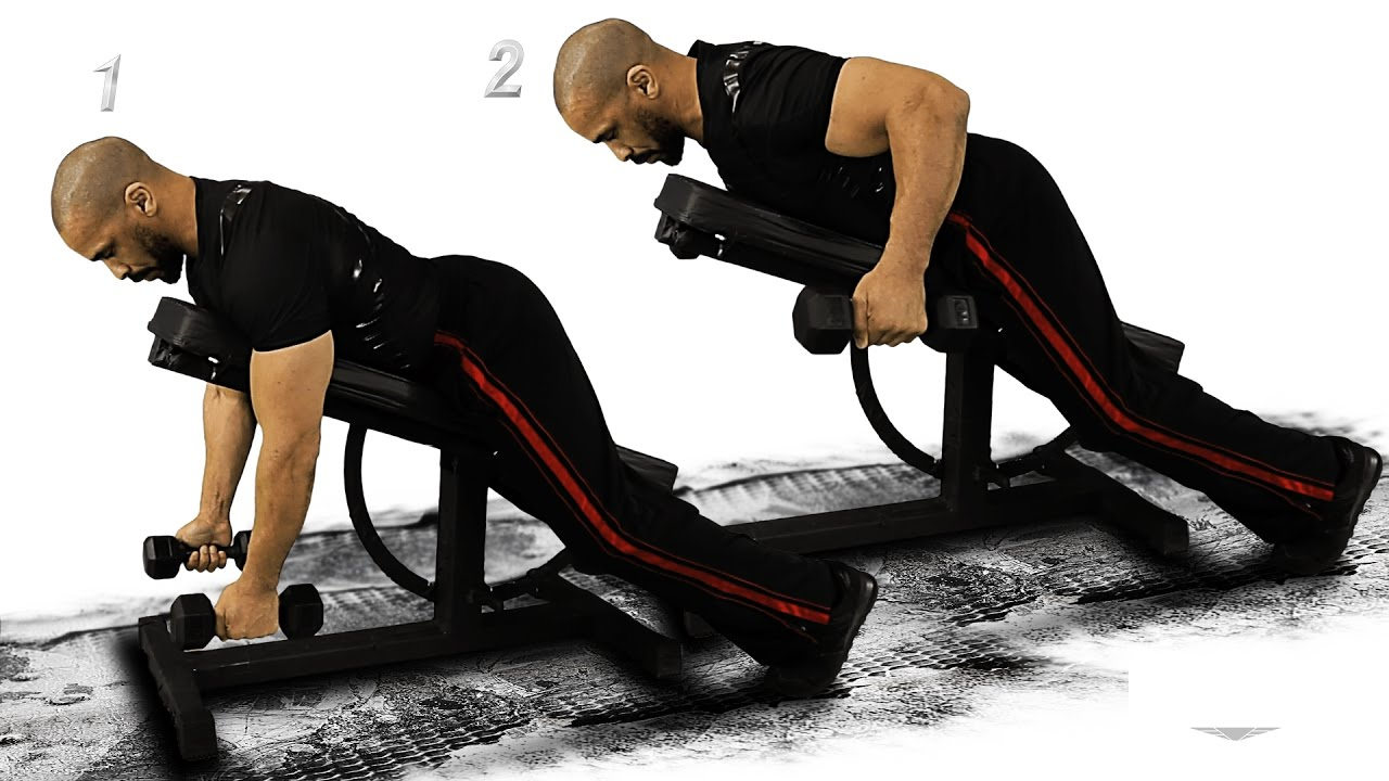 Good Fly Bench Part - 2: Shoulders Reverse Fly Dumbbell 1 Incline Bench