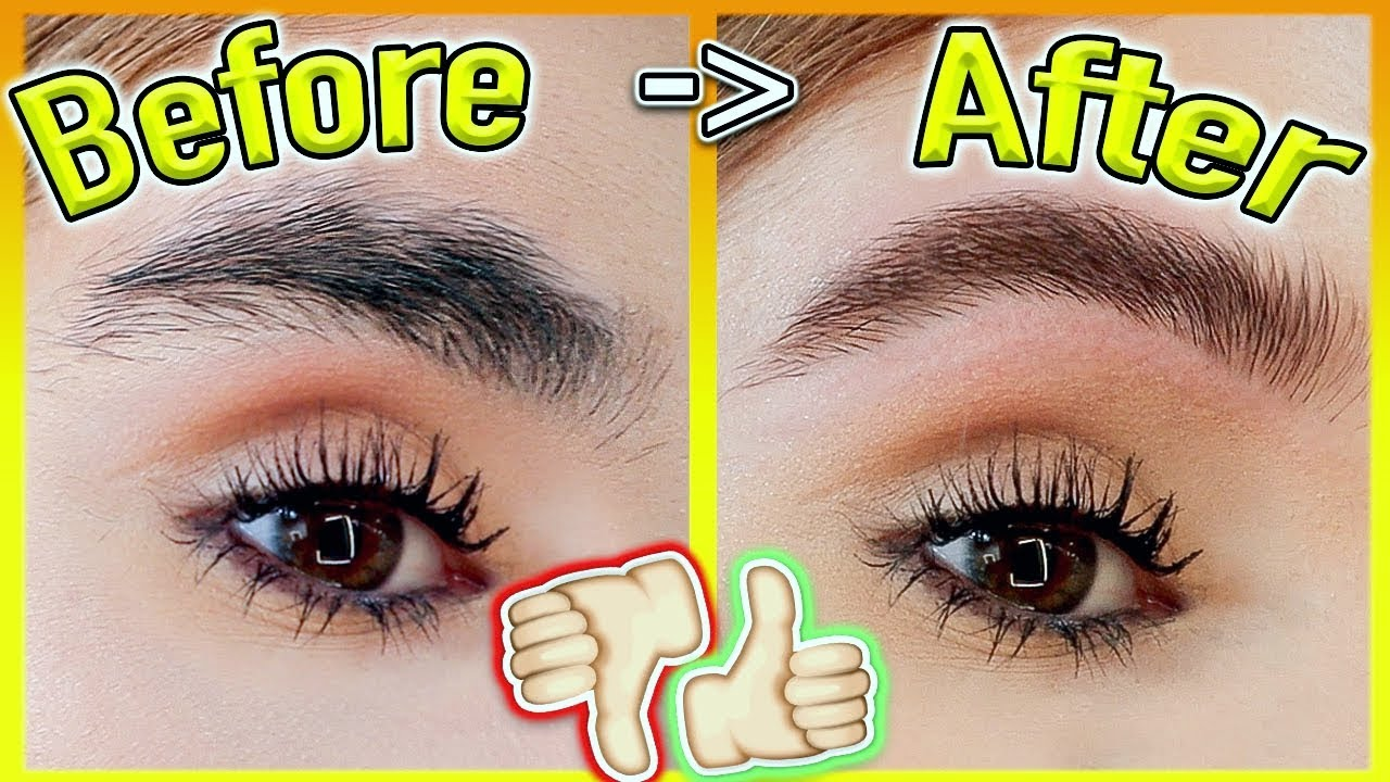 How to GROW Your EYEBROWS *FAST!* (Thick & Natural Results ...