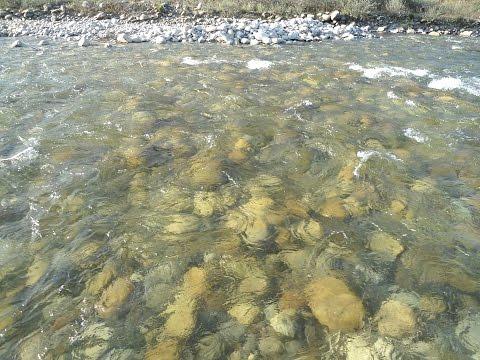 Paro chhu river, Bhutan, My first visit to Bhutan