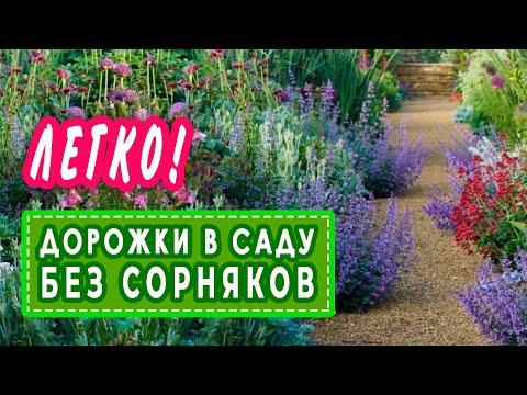 Дорожки в саду без сорняков. Альтернативный метод гербицидам.