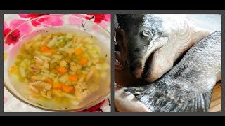 Уха из красной рыбы рецепт. Рыбный суп