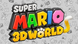 Super Mario 3D World (dunkview) (Video Game Video Review)
