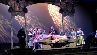 Field of Flowers-Narnia The Musical