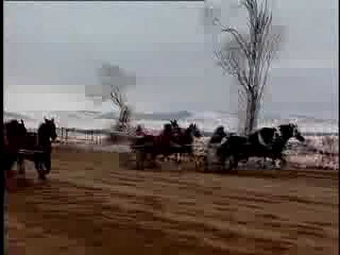 Wyoming Cutter Racing
