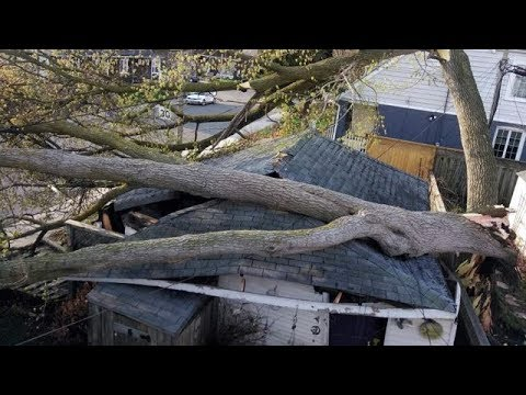 Ontario wind storm leaves at least two dead