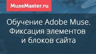 #30. MuseMaster.ru. Фиксация элементов в Adobe Muse.