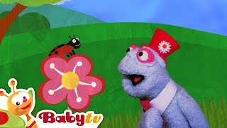 Flowers and Animals | BabyTV