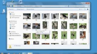 Comment transférer une copie du dossier de photos sur la clé USB sous Windows7.www.formenligne.org
