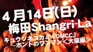 撮影/編集:加藤マニ ...キュウソネコカミによる初のワンマンが東京、大...