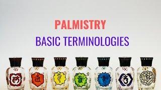 PALMISTRY - BASIC TERMINOLOGIES