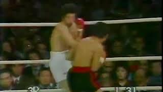 WBA J 플라이급 T.M 구시켄 요코 vs 페드로 프…