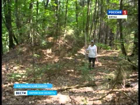 Экспедиция по малмыжскому району Кировской области.