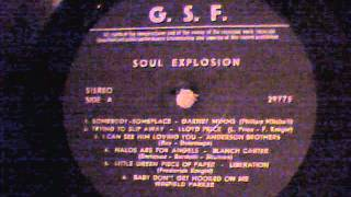 Anderson Brothers - I Can See Him Loving You
