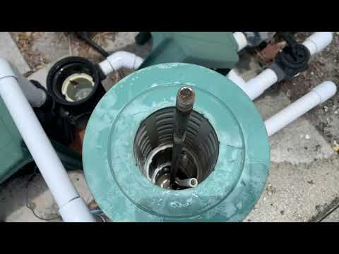 How to clean your pool filter and basket