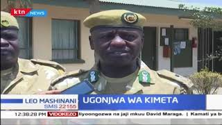 Nyati 10 wafariki kwa Ugonjwa wa Kimeta eneo la mbuga la Nakuru