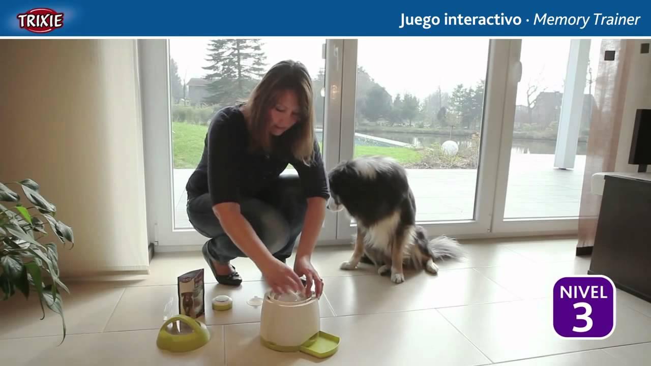 Juego De Inteligencia Para Perros Trixie Dog Activity Memory Trainer Youtube