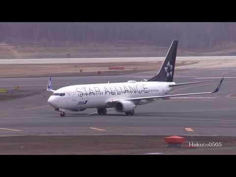 ANA Boeing 737-881 JA51AN Landing at Sapporo