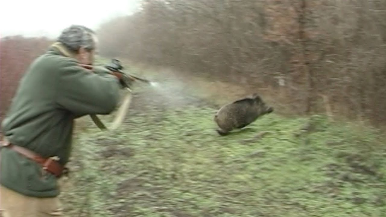 Lov na slikama i videu Maxresdefault