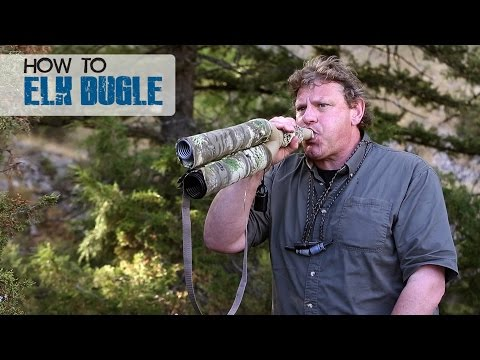 How to Use an Elk Bugle - Dieter Kaboth