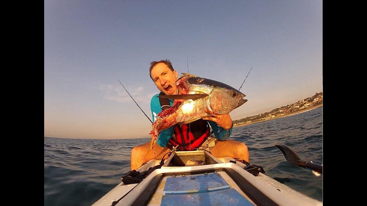 Kayak fishing fight for a tuna with a shark youtube for How to kayak fish