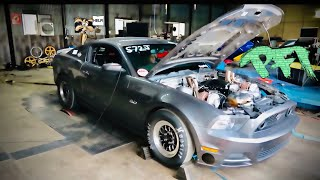 8500 RPM and 1500hp Coyote Dyno Rips! Let get Wile E