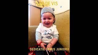 LEO DE VIS PARIS PARIS DEDICATIE PARIS JUNORU
