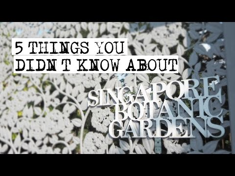 Singapore Botanic Gardens: 5 Things You Didn't Know | CNA Insider